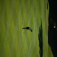 ゴルフのフィールドはとても広い。いついかなる状況でもルールさえ守れば撮影が可能。望遠のすごさ、とくと味わえ! 2014年 ミヤギテレビ杯ダンロップ女子オープン 初日 福田真未