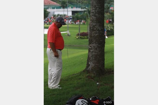 木の根っこについた球を見て思案するブレン