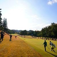 アイアンで楽々ツーオンの優作の17番。 2017年 ゴルフ日本シリーズJTカップ 3日目 宮里優作