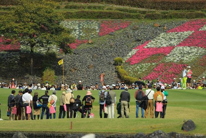 芝桜の季節ですな 2018年 東建ホームメイトカップ 初日 石川遼