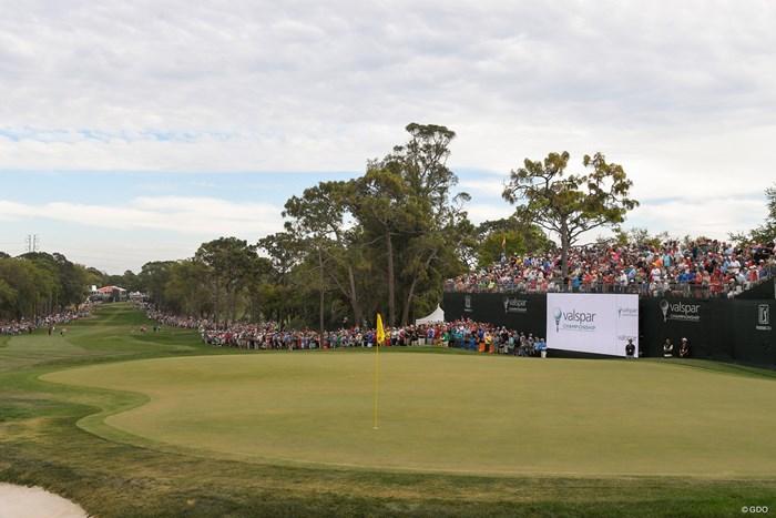 画像の左奥からティショット。傾斜の激しいグリーンが厄介だ(Ryan Young/PGA-TOUR/Getty Images) 2019年 バルスパー選手権 事前 イニスブルックリゾート18番ホール